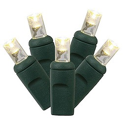 20 Battery Operated LED 5MM Warm White Lights 4 Inch Spacing Green Wire Box of 12