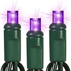 25 LED 5MM Wide Angle Purple All Strobe String Lights - Green Wire