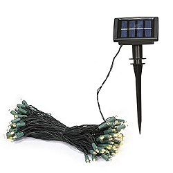 50 LED 5MM Wide Angle Solar Warm White String Light Set Green Wire with Timer